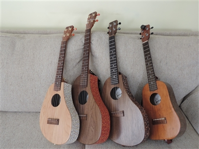 Soprano Wood Laminate Ukulele